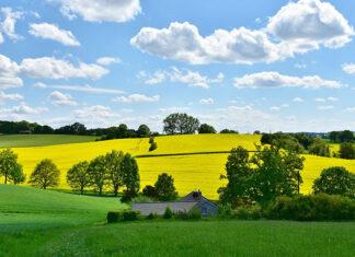 Zakup odpowiednich wyrobów do zastosowania w działalności rolniczej